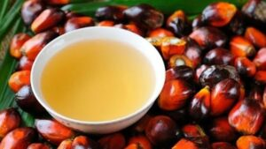 Dispelling Myths about Palm Oil